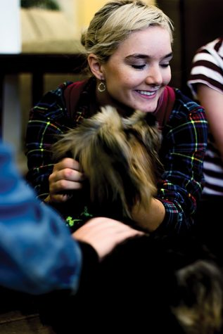 Therapy dogs benefit stressed out students