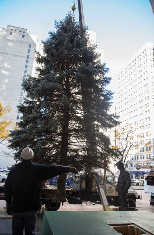 Christmas tree makes arrival Downtown
