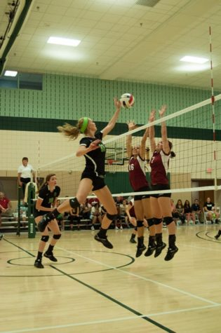 Volleyball gains momentum with four-game winning streak