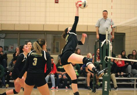 Volleyball season ends in NAIA tournament