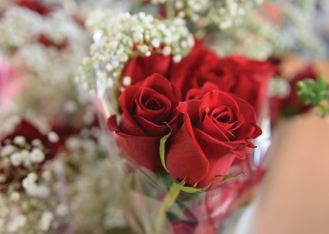 Rugby club sells roses for Valentine's Day