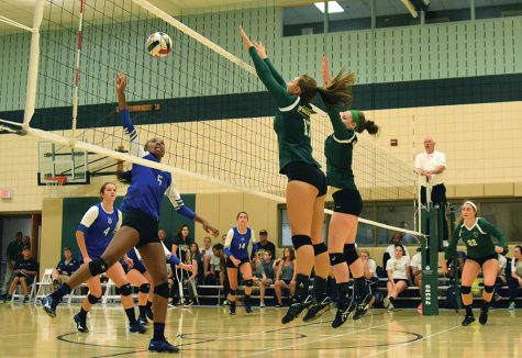 Expanded volleyball roster seeks nationals return