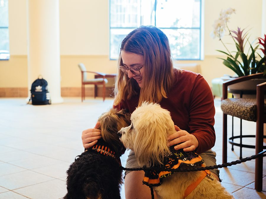 Campus Canines in Lawrence Hall Lobby October 3, 2019 in Pittsburgh, Pennsylvania. (Photo by Jared Murphy)