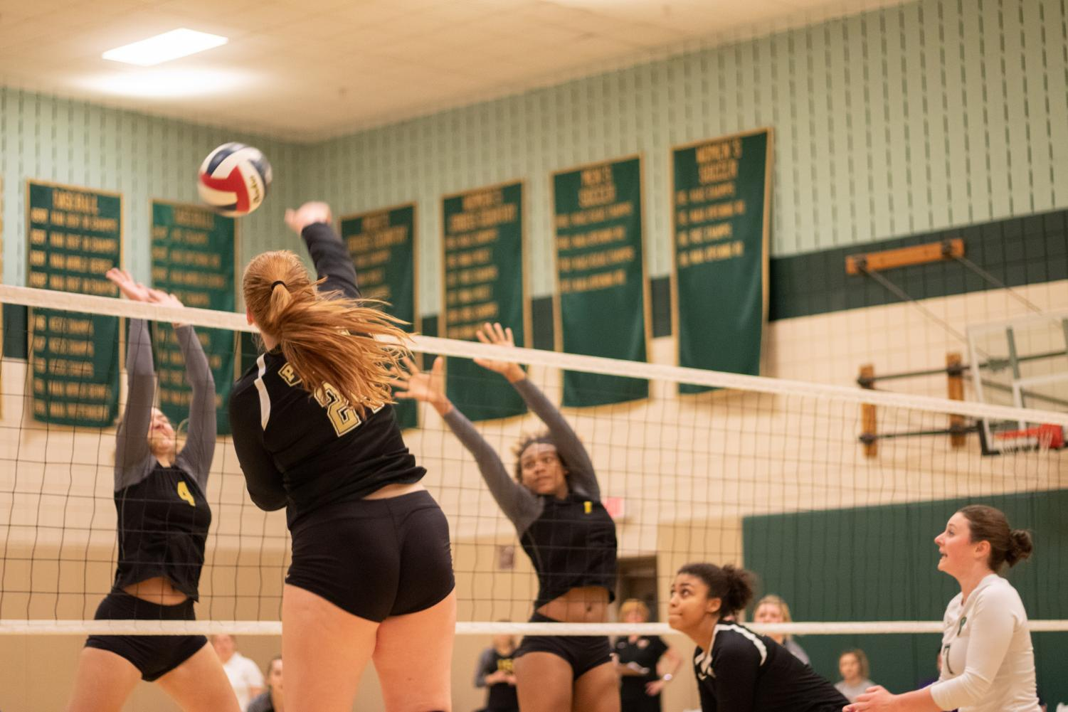 Freshman outside hitter Taylor Small goes up for a kill against Carlow in the student center gym last Tuesday.